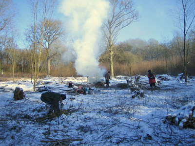 Coppicing in the Snow...